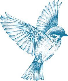 Vintage Blue Bird by GDJ