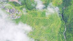 Scenic Aerial View Of Terraced Fields In Guizhou, A Mountainous Province In Southwest China   A series of aerial images of Guizhou in southwest China has recently been released. The beautiful landscape of terraced fields resembles fingerprints. The stunning photos were clicked over Yueliang Mountain rice terraces, located in Qian Autonomous Prefecture of Miao and Dong, southeastern Guizhou.