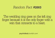 you learn something new everyday (: