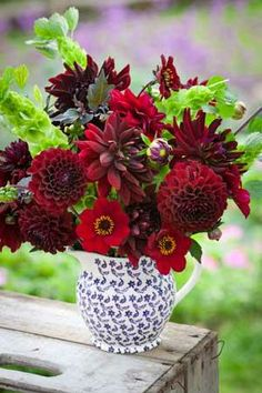 Sublime Dark Dahlia Collection   I'm getting the idea! might be able to order direct from Sarah Raven