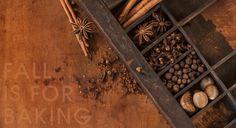 Nutmeg Imageworks