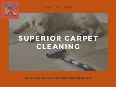 #CarpetSteamCleaning #UpholsteryCleaning #AirDuctCleaning #TileCleaning #GroutCleaning #PetStainRemoval #OdorRemoval #CarpetRepair #CarpetStretching #RoofCleaning #HouseCleaning #GutterCleaning #PressureWashing #FreeEstimate #EmergencyService #SuperiorCarpetCleaning