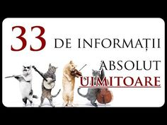 33 de informații absolut UIMITOARE - YouTube Sequoia National Park, Louis Armstrong, Youtube, Youtubers, Youtube Movies