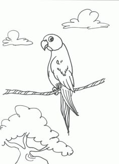 african birds coloring pages | Click on the coloring page or this button to print the Parrot page.