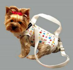 Puppy Purses