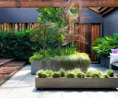 A warehouse conversion has inspired industrial-style landscaping in this spectacular urban courtyard located in Sydney's inner west. #outdoor_ideas #courtyard
