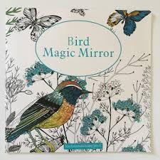 Resultado de imagen para bird magic mirror pintara