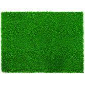 Found it at Wayfair - Diamond Pro Spring Lawn Grass Turf Doormat