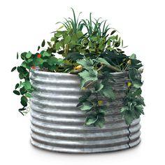 Manufactum Hochbeet Wellblech | Pflanzenvermehrung