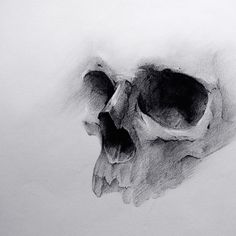 "ᴋʟᴀᴜᴅɪᴀ ᴘᴀᴠʟɪᴄᴋᴏ (@klaudiapavlicko) ""Skull study from the archives #art #drawing #skull #skullart #skulldrawing #sketch #kohinoor…"""