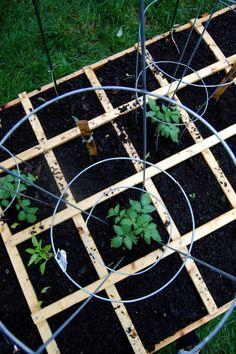 Gardening tips | Tips & Inspiration | gardening | weekend ideas | relax
