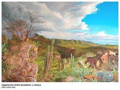 Vegetación entre Querétaro y Celaya