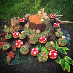 I Made a Tree Stump Toadstool Cake and Cupcakes for a Woodland Themed First Birthday :)