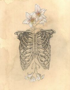 SALE Limited Edition HUMAN NATURE Anatomy Series Number 2 8x10 Glossy Print Ribs Orchids Signed and Numbered. $19.00, via Etsy.