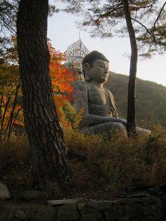 Bronze Buddha of Sinheungsa in the morning light