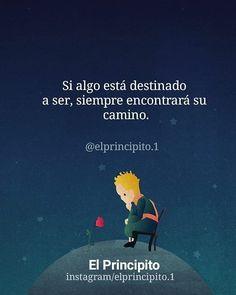 Reposted from @elprincipito.1 🎑Disfruta más contenido en @elprincipito.1 🍁🦋 . . . . .…