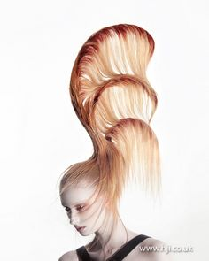 Oh...to have that kind of volume, heh. Ceri Cushen Avant Garde Hairdresser of the Year Finalist