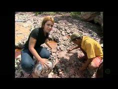 Os mistérios da Chapada Diamantina - Câmera Record (03-06-2011) - YouTube