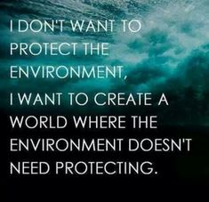 I want to protect the environment. We would love to live in a world where we, environmental advocacy organizations, are no longer needed. BUt as long as nature needs protecting we'll be here to do it.