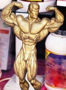 Muscle Building and Muscle Recovery Scientific Secrets You Need to Know