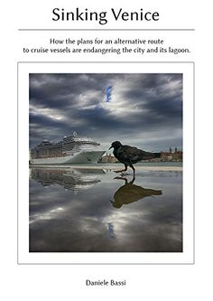 Sinking Venice: Why Venice doesn't need the cruise industry and how the plans for an alternative route to vessels are endangering the city. by Daniele Bassi http://www.amazon.com/dp/B011W50CO0/ref=cm_sw_r_pi_dp_KH3Uvb0H5M44N