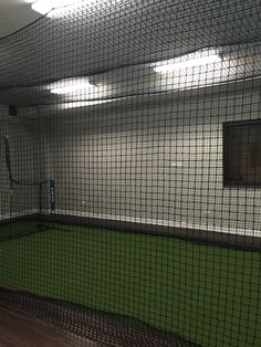 Best Of Basement Batting Cage Ideas