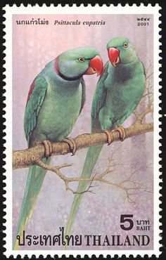 Alexandrine Parakeet stamps - mainly images - gallery format