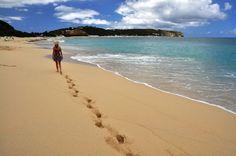 Strolling Baie Longue Beach in St. Martin