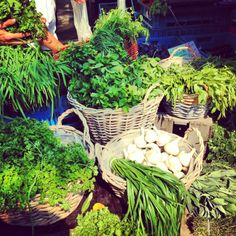 love all the herbs