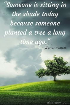 """Someone is sitting in the shade today because someone planted a tree a long time ago."" ~ Warren Buffet"