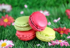 I just think that macrons are wonderful. One day I will learn how to make them.
