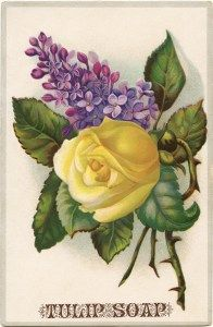 free clip art yellow rose purple lilac Victorian Tulip Soap card