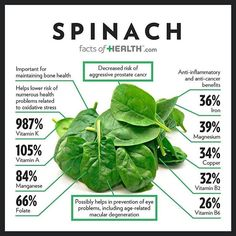 #spinach Nutrition Education, Sport Nutrition, Nutrition Tips, Health And Nutrition, Health And Wellness, Spinach Nutrition Facts, Health Fitness, Nutrition Activities, Herbs
