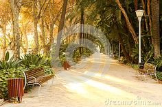 Photo about Beautiful sunny afternoon in Parque de la Alameda Andalucia Malaga Spain. Image of andalucia, afternoon, alameda - 65774598 Malaga City, Malaga Spain, Sunny Afternoon, Chula, Andalucia, Country Roads, Stock Photos, Beautiful, Garden