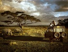 Safari in the Serengeti Kenya, Tanzania, The Places Youll Go, Cool Places To Visit, Places To Travel, Out Of Africa, East Africa, African Animals, African Safari