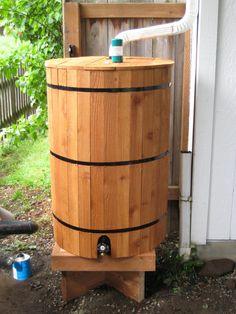 Consider a rain barrel for your yard