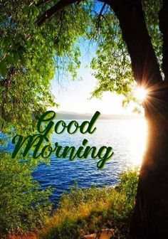 Good Morning Flowers Pictures, Good Morning Beautiful Pictures, Good Morning Beautiful Images, Morning Pictures, Good Morning Nature Images, Good Morning Greeting Cards, Good Morning Greetings, Morning Messages, Morning Qoutes
