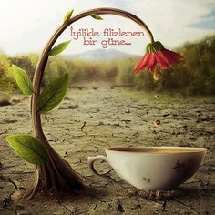 Ama önce bi #kahve diyenler? Kahvenin gününüze keyif kattığı güzel bir gün olsun.☕ İyilikle filizlenen günler dileğiyle.. iyi sabahlar olsun. #kahve #coffee #cuma #friday #goodmorning #günaydın