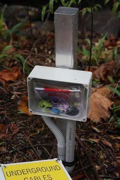 What do you know?  It's actually a geocache fully equipped with log book, pencil, swag and cache dwelling frog.