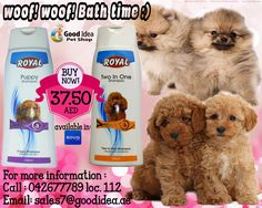 Woof! Woof! Bath time :) For especially mild care and Two in one Shampoo and Conditioner ♥ for Affordable prices. For more information : Call : 042677789 loc 112 Email : sales7@goodidea.ae We are open for those who have Petshops and Grooming Center or Salon for animals ♥ #DXB #Grooming #GroomCare #Shampoo #Puppy #Shampoo #Conditioner #DogLovers #PetCare #HealthisWealth