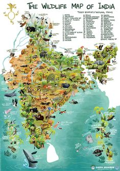 Dr Rohan Chakravorty illustrates the country's lush forests, wetlands and wildlife through beautiful caricatures.