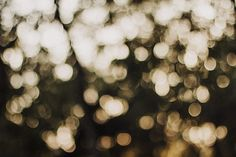 Royalty free photo: city, art, lights, texture, abstract, background, blur, bokeh, bright, christmas, focus, glisten Lightroom, Photoshop, Creative Pictures, Cool Pictures, Royalty Free Photos, Free Stock Photos, Wedding Limo Service, How To Order Coffee, Bokeh Background