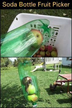 Can't reach the fruits hanging from the higher branches of your trees? Don't let them go to waste, use a fruit picker!