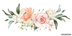 floral illustration, Leaf and buds. Botanic composition for wedding or greeting card. branch of flowers - abstraction roses - Buy this stock illustration and explore similar illustrations at Adobe Stock Watercolor Flower Background, Watercolor Rose, Watercolor Paintings, Free Watercolor Flowers, Illustration Blume, Watercolor Illustration, Arte Floral, Flower Backgrounds, Floral Illustrations