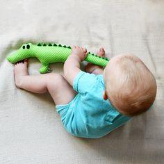 Crocodile TADEK
