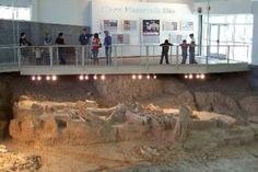 Mammoth Site on TripAdvisor
