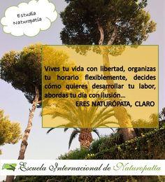 naturopata | Escuela Internacional Naturopatia M.R.A.
