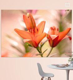 Orange Lilien Blüte, im Sommer Garten. Große Blüten die das Herz erfreuen.