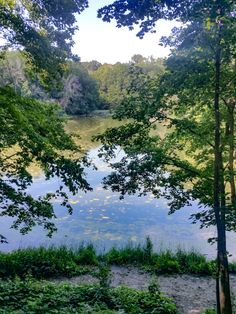Matthiessen State Park is the perfect place for an adventure, on a budget, for a family, or in this case, the guys and a dog. Come along with us.