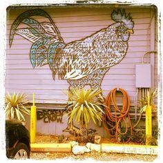 Austin, Texas ... Keep Austin weird!!! :-)